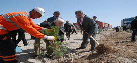 Emekliler Aykent'te Fidan Dikti