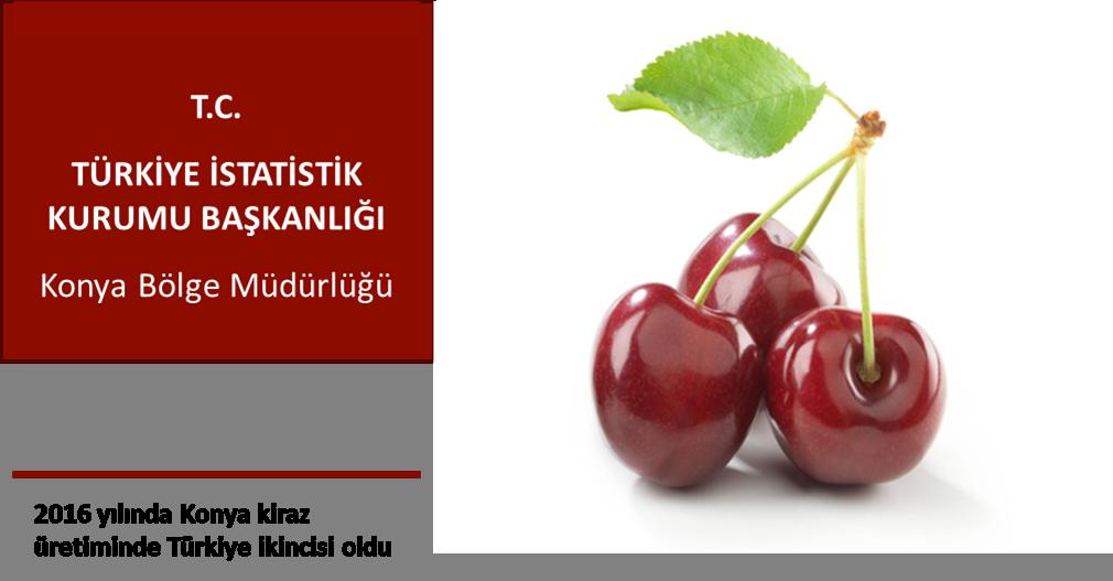 Konya kiraz üretiminde Türkiye ikincisi…